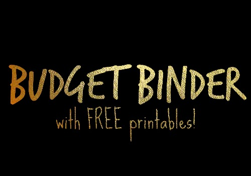 Budget Binder with Free Printables - NovaturientSoul.com